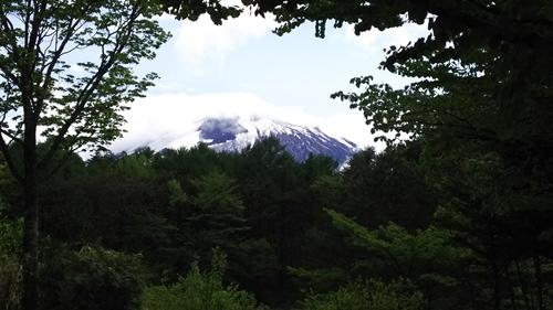 2017.5.15 岩手山SA8.JPG