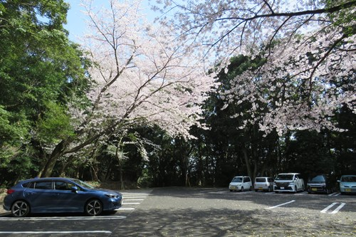 2018.3.30 石岳展望台5.JPG