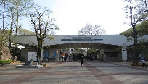 2018.4.3 動物園9.JPG
