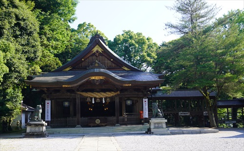 2019.6.13 和霊神社 4.JPG