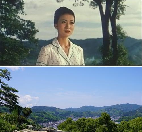 2019.6.13 宇和島城10.jpg